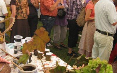 Wijndorp besteedt volop aandacht aan gastronomie