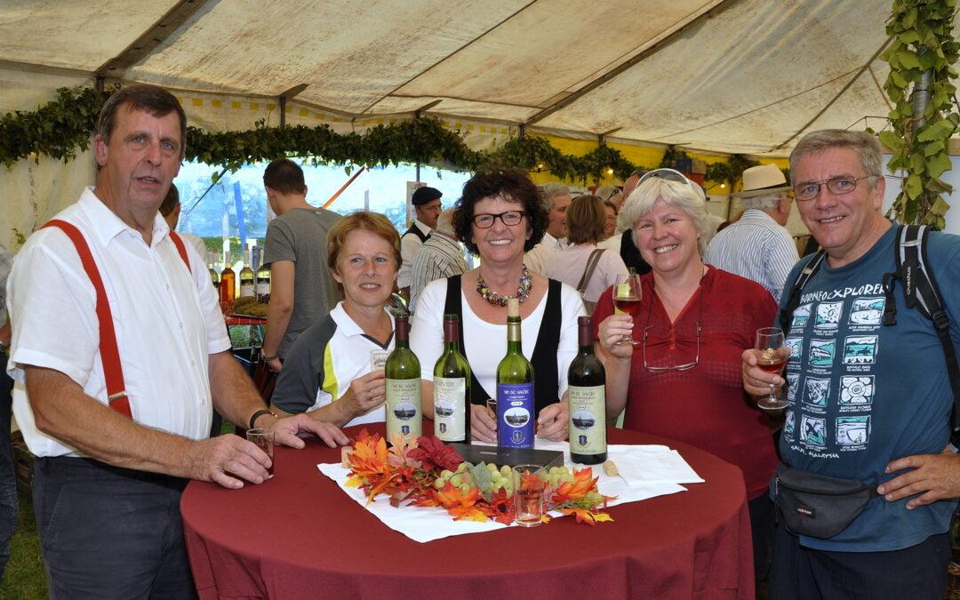 Wijnkoningin gezocht